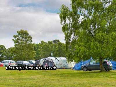 Holmsley Caravan and Camping Site