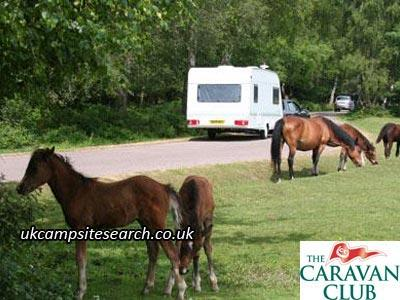 Black Knowl Caravan Club Site