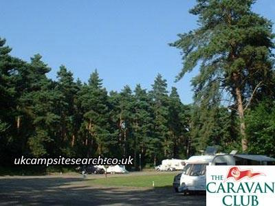Thetford Forest Caravan Club Site